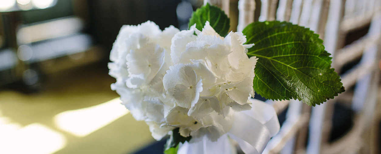 A white flower with green leaves and a bow, a small bouquet for a low key, classy wedding.